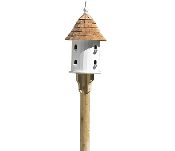 Lazy-Hill-Bird-House